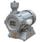 FSD-100电